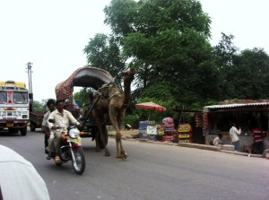 India 055